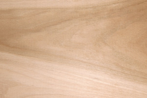 Beech End Grain Butcher Block Countertops
