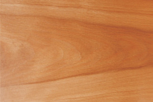 Prefinished Beech Wood Plank Countertops
